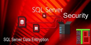 SQL Server Transparent Data Encryption ( TDE )