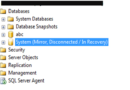 Miror Disconnected / In Recovery